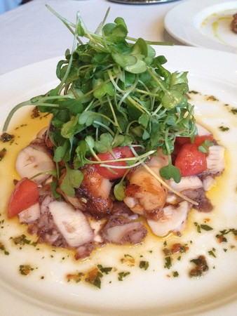 CARNEVINO - Braised Octopus Antipasti