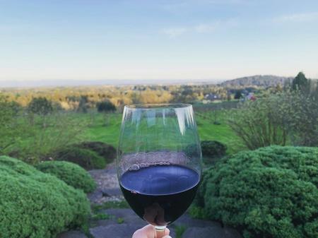 Terra Vina Vineyard - Vineyard1