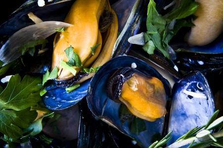 Bleu Boheme - Mussels