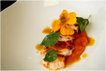 TWIST by Pierre Gagnaire - Maine Lobster