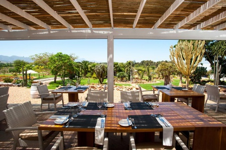 Restaurant Succulent by Chef Werner Snoek - Restaurant Succulent by Chef Werner Snoek