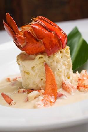 Terra American Bistro - Lobster Macaroni 'n Cheese