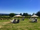 Terra Vina Vineyard - Adirondack Seating in the Lawn